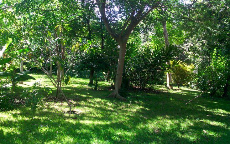 Foto de local en renta en, cerro gordo, actopan, veracruz, 1445527 no 04