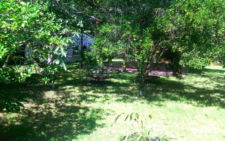 Foto de local en renta en, cerro gordo, actopan, veracruz, 1445527 no 14