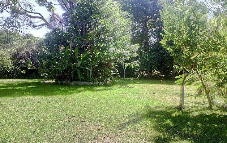 Foto de local en renta en  , cerro gordo, actopan, veracruz de ignacio de la llave, 1445527 No. 02