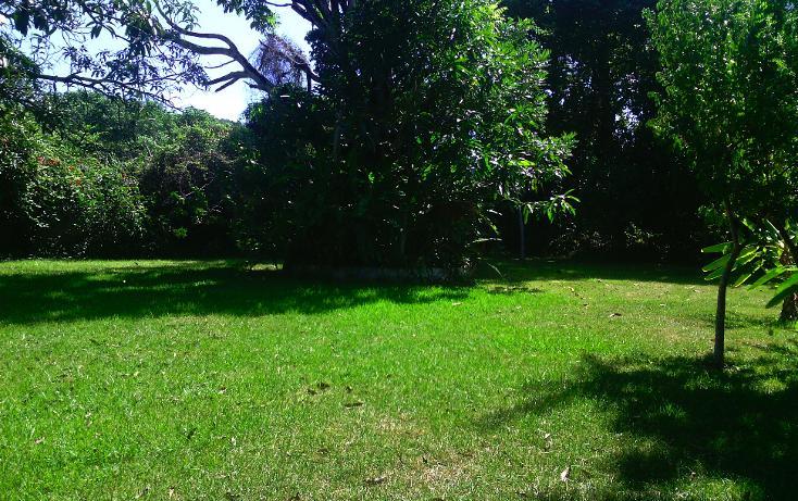 Foto de local en renta en  , cerro gordo, actopan, veracruz de ignacio de la llave, 1445527 No. 03