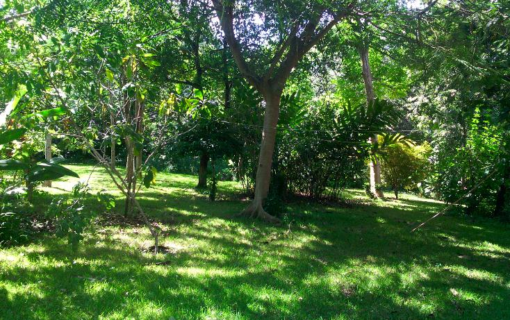 Foto de local en renta en  , cerro gordo, actopan, veracruz de ignacio de la llave, 1445527 No. 04