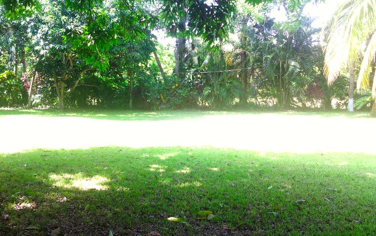 Foto de local en renta en  , cerro gordo, actopan, veracruz de ignacio de la llave, 1445527 No. 12