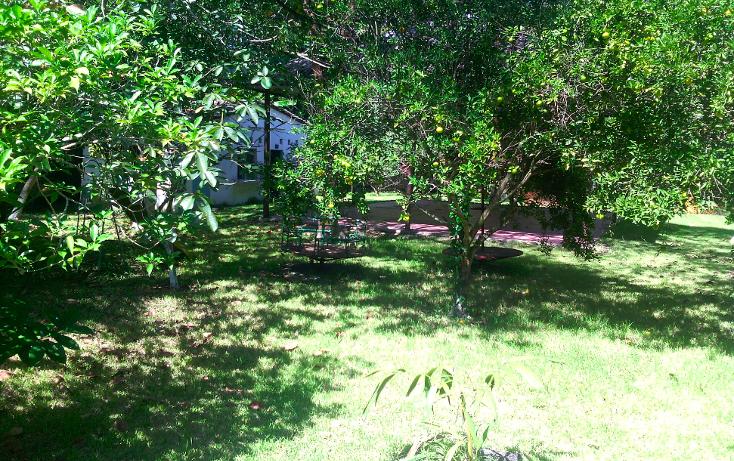 Foto de local en renta en  , cerro gordo, actopan, veracruz de ignacio de la llave, 1445527 No. 14