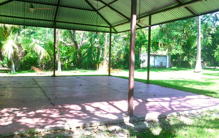 Foto de local en renta en  , cerro gordo, actopan, veracruz de ignacio de la llave, 1445527 No. 15