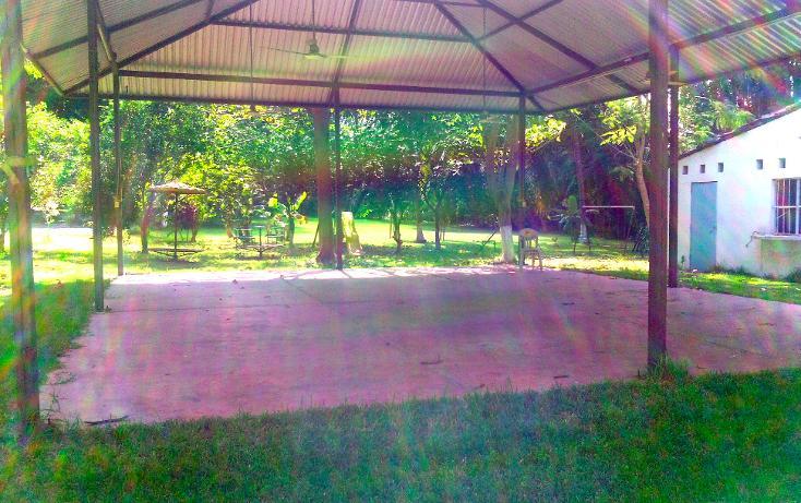 Foto de local en renta en  , cerro gordo, actopan, veracruz de ignacio de la llave, 1445527 No. 19