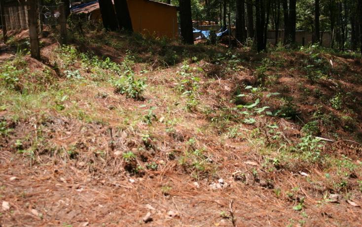 Foto de terreno habitacional en venta en  , cerro gordo, valle de bravo, méxico, 869479 No. 02