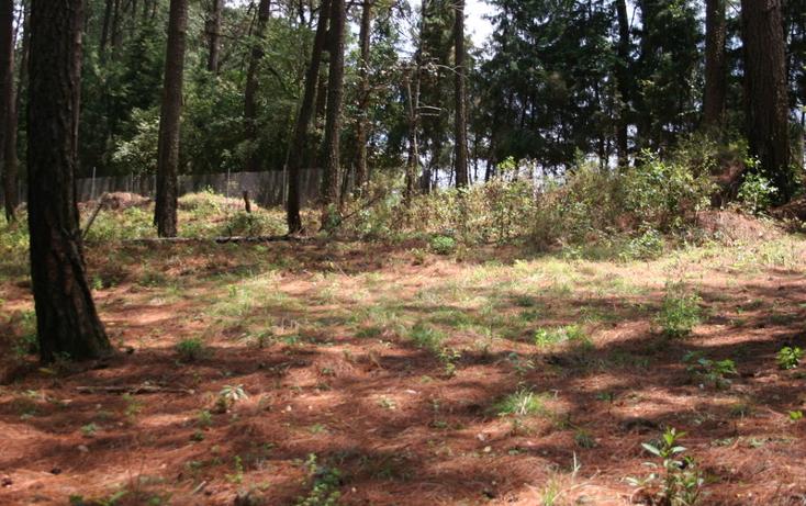 Foto de terreno habitacional en venta en  , cerro gordo, valle de bravo, méxico, 869479 No. 03