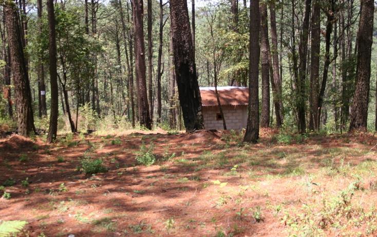 Foto de terreno habitacional en venta en  , cerro gordo, valle de bravo, méxico, 869479 No. 04