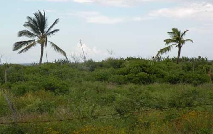 Foto de terreno habitacional en venta en  , chabihau, yobaín, yucatán, 1091277 No. 02
