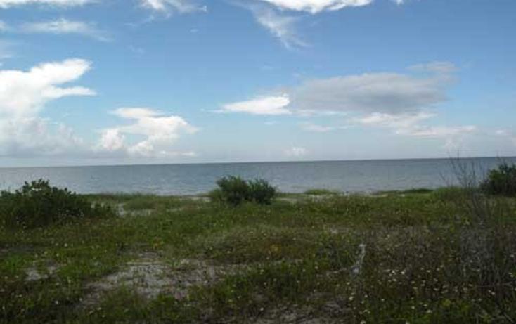 Foto de terreno habitacional en venta en  , chabihau, yobaín, yucatán, 1091277 No. 04
