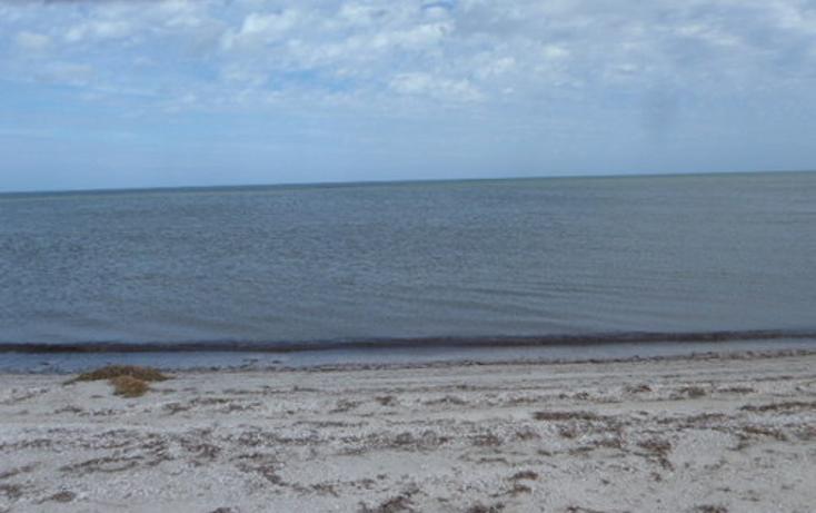 Foto de terreno habitacional en venta en  , chabihau, yobaín, yucatán, 1091277 No. 06