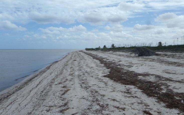Foto de terreno habitacional en venta en  , chabihau, yobaín, yucatán, 1091277 No. 07