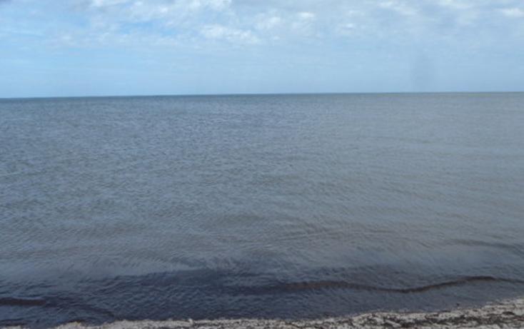 Foto de terreno habitacional en venta en  , chabihau, yobaín, yucatán, 1091277 No. 09