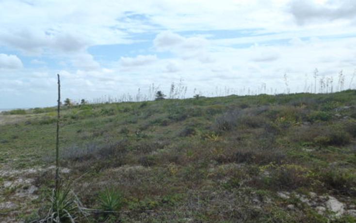 Foto de terreno habitacional en venta en  , chabihau, yobaín, yucatán, 1091277 No. 10