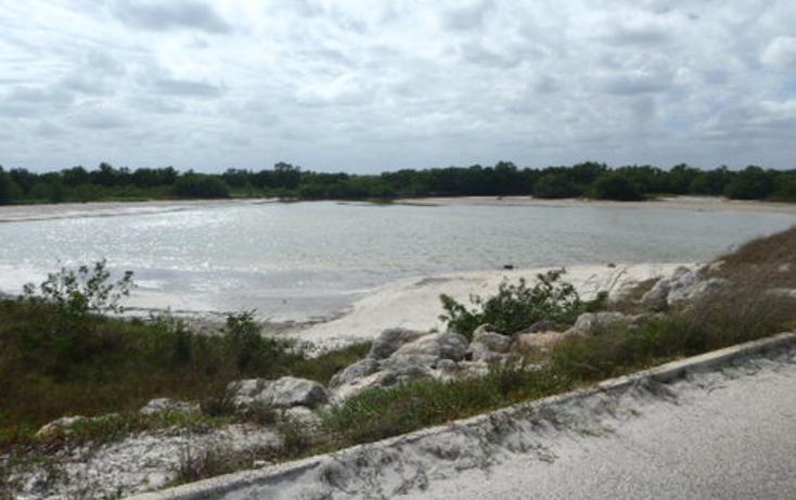 Foto de terreno habitacional en venta en  , chabihau, yobaín, yucatán, 1091277 No. 14