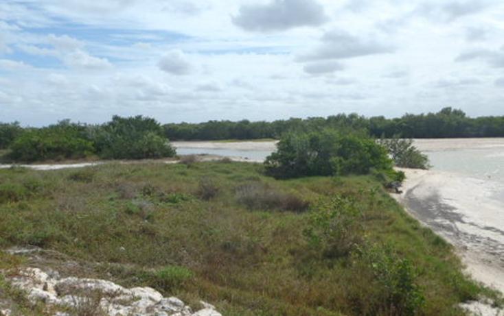Foto de terreno habitacional en venta en  , chabihau, yobaín, yucatán, 1091277 No. 15
