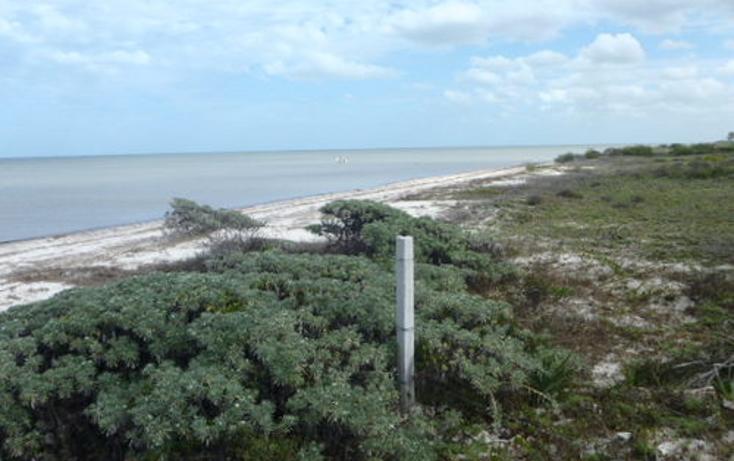 Foto de terreno habitacional en venta en  , chabihau, yobaín, yucatán, 1091277 No. 20