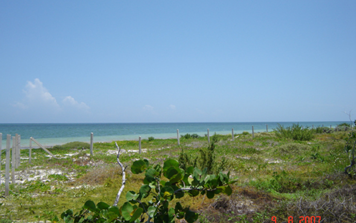 Foto de terreno habitacional en venta en  , chabihau, yobaín, yucatán, 1147121 No. 01