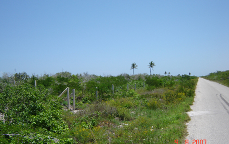 Foto de terreno habitacional en venta en  , chabihau, yobaín, yucatán, 1147121 No. 02