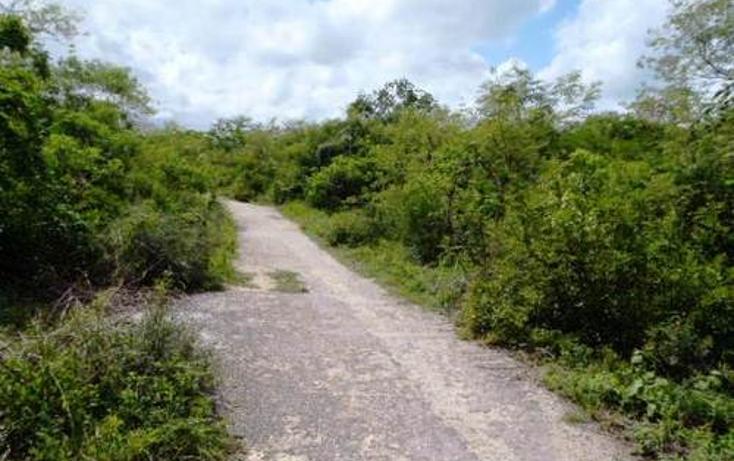Foto de terreno habitacional en venta en  , chablekal, mérida, yucatán, 1097147 No. 06
