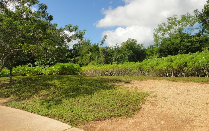 Foto de terreno habitacional en venta en, chablekal, mérida, yucatán, 1209533 no 02