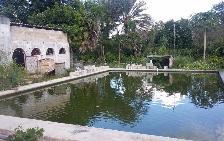 Foto de terreno habitacional en venta en, chablekal, mérida, yucatán, 1438429 no 02