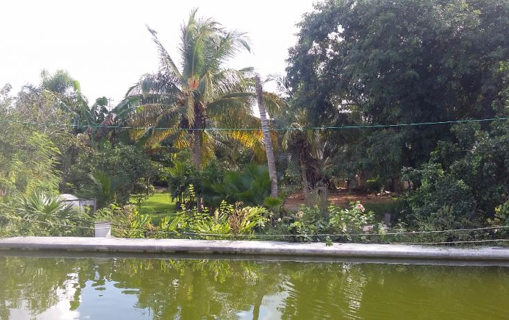 Foto de terreno habitacional en venta en, chablekal, mérida, yucatán, 1438429 no 04