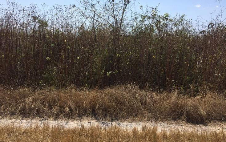 Foto de terreno habitacional en venta en  , chablekal, m?rida, yucat?n, 1908421 No. 03