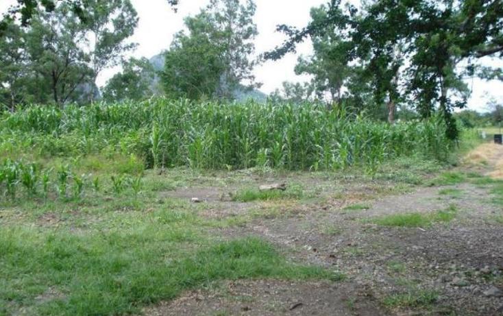 Foto de terreno comercial en venta en  , chalcatzingo, jantetelco, morelos, 1783230 No. 03