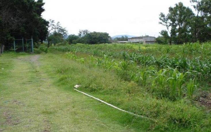 Foto de terreno comercial en venta en  , chalcatzingo, jantetelco, morelos, 1783230 No. 04