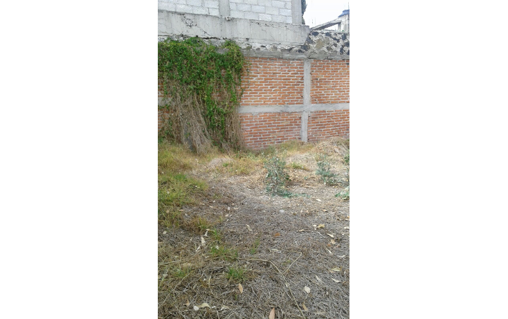Foto de terreno comercial en venta en  , chalco de d?az covarrubias centro, chalco, m?xico, 1616254 No. 03