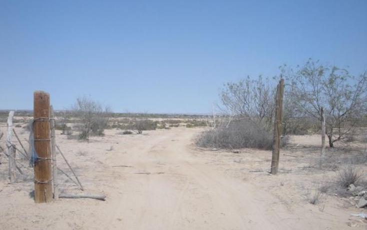 Foto de terreno habitacional en venta en  , chametla, la paz, baja california sur, 1277043 No. 07