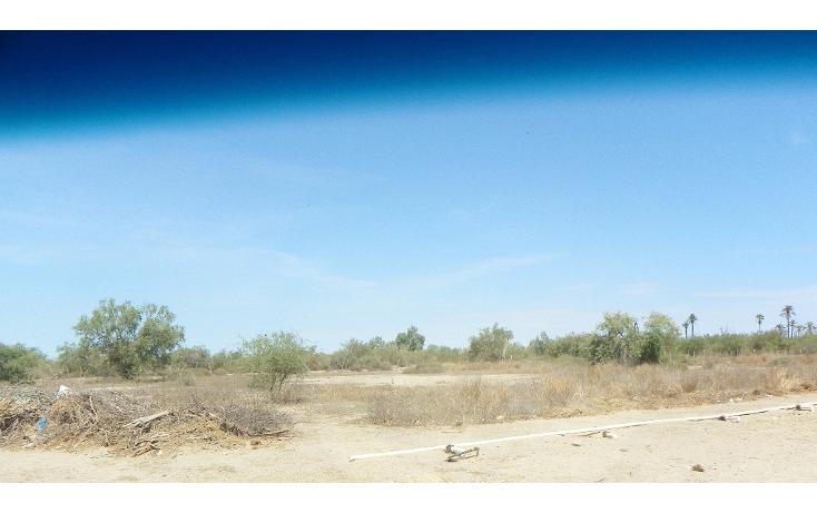 Foto de terreno comercial en venta en  , chametla, la paz, baja california sur, 1400105 No. 02