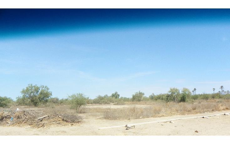 Foto de terreno habitacional en venta en  , chametla, la paz, baja california sur, 1721110 No. 03