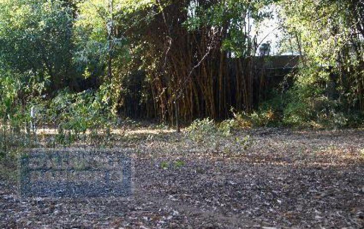 Foto de terreno habitacional en venta en, chamilpa, cuernavaca, morelos, 2029969 no 03