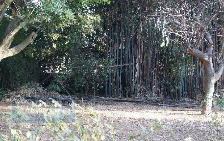 Foto de terreno habitacional en venta en, chamilpa, cuernavaca, morelos, 2029969 no 07