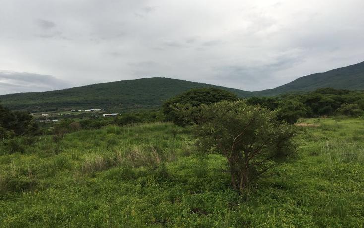 Foto de terreno comercial en venta en  , chaparaco, zamora, michoacán de ocampo, 1289723 No. 04