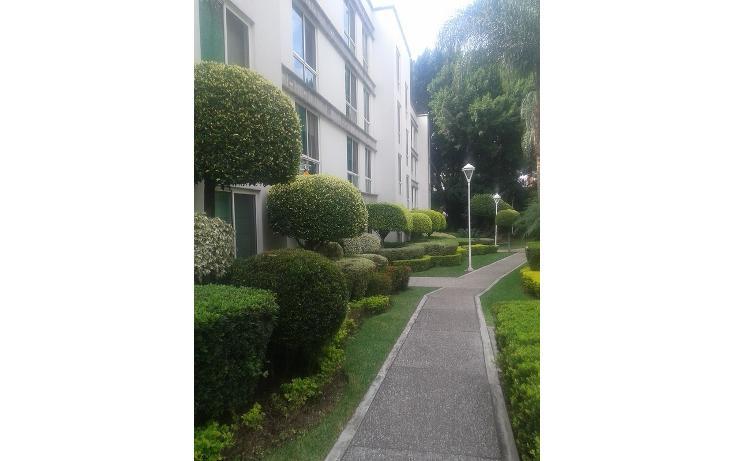 Foto de departamento en renta en  , chapultepec, cuernavaca, morelos, 1558131 No. 01