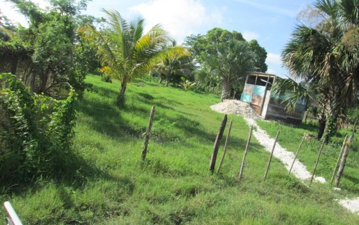 Foto de terreno habitacional en venta en  , chekubul, carmen, campeche, 1135349 No. 01