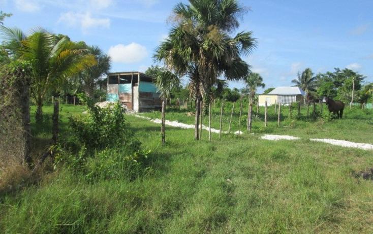 Foto de terreno habitacional en venta en  , chekubul, carmen, campeche, 1135349 No. 06