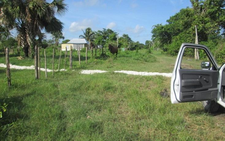 Foto de terreno habitacional en venta en  , chekubul, carmen, campeche, 1135349 No. 07