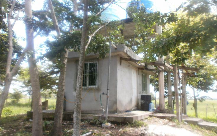 Foto de terreno habitacional en venta en, chekubul, carmen, campeche, 1315891 no 01