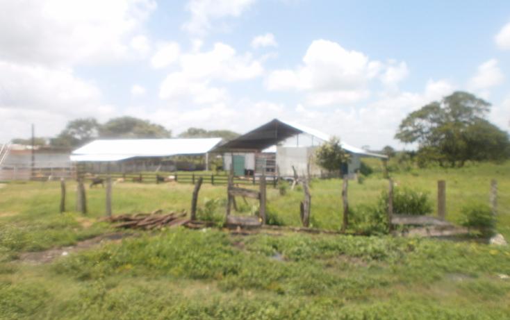 Foto de terreno habitacional en venta en  , chekubul, carmen, campeche, 1315891 No. 03
