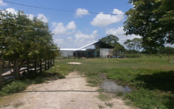 Foto de terreno habitacional en venta en  , chekubul, carmen, campeche, 1315891 No. 06