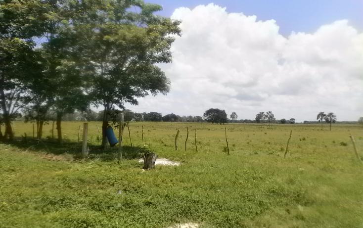 Foto de terreno habitacional en venta en  , chekubul, carmen, campeche, 1315891 No. 07