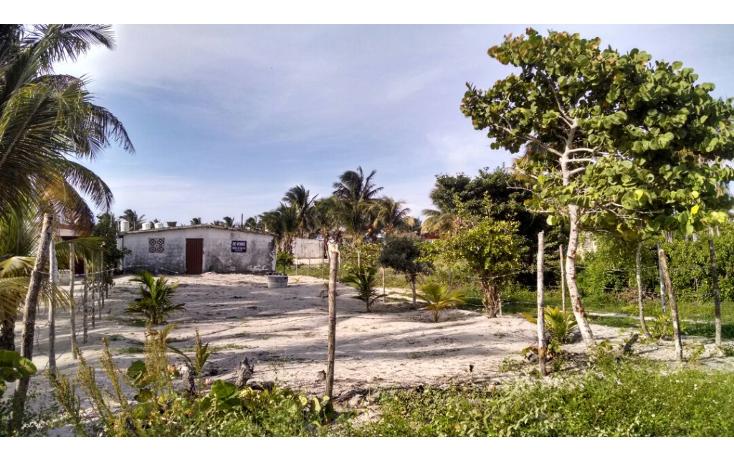 Foto de terreno habitacional en venta en  , chelem, progreso, yucat?n, 1241273 No. 01