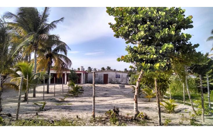 Foto de terreno habitacional en venta en  , chelem, progreso, yucat?n, 1241273 No. 04