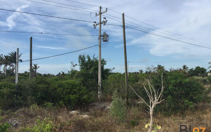 Foto de terreno habitacional en venta en  , chelem, progreso, yucatán, 2035396 No. 01