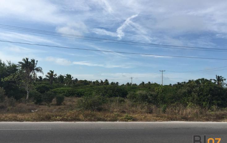 Foto de terreno habitacional en venta en  , chelem, progreso, yucatán, 2035396 No. 02