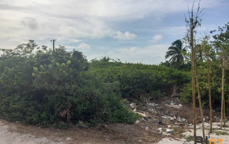 Foto de terreno habitacional en venta en  , chelem, progreso, yucatán, 2038504 No. 03